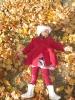 Клен забросал осенней листвой